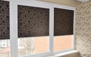 Кассетные рулонные шторы на пластиковые окна фото
