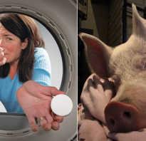Запах в машинке стиральной