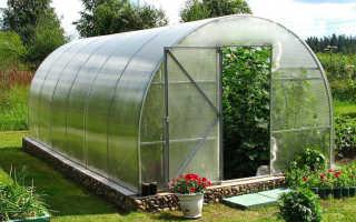 Размер поликарбоната для теплиц