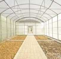 Как подготовить землю в теплице осенью